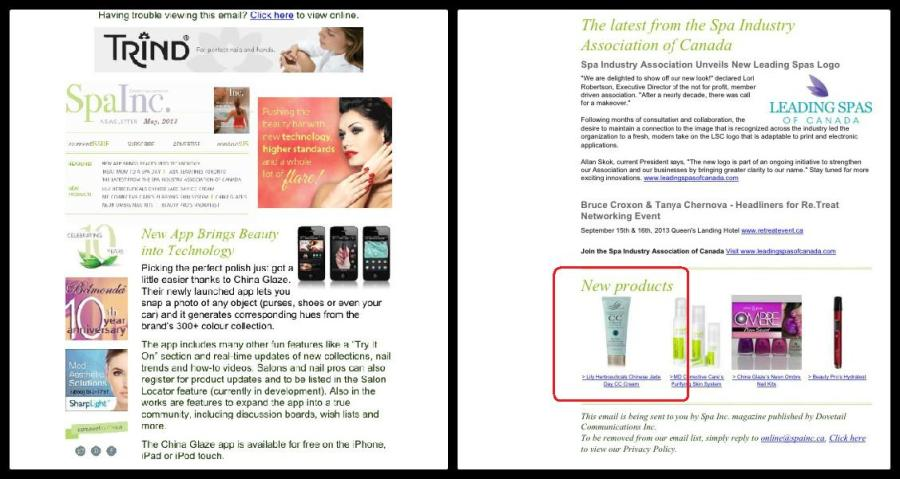 Spa Inc. Magazine Newsletter