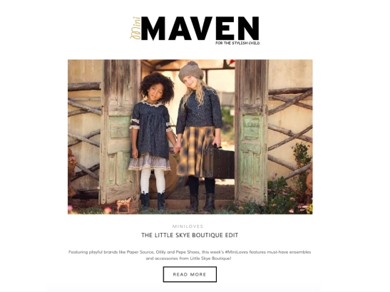 LS MINI MAVEN.001